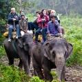 Projižďka na slonech